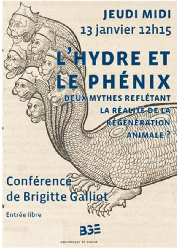 Prof. Galliot's public conference on hydras
