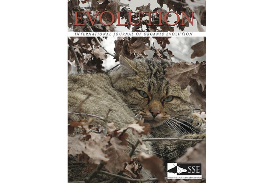 "Claudio S. Quilodrán, Juan Montoya-Burgos and Mathias Currat make the cover of ""Evolution"" magazine"